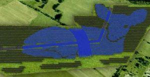 У Польщі збудують сонячну електростанцію, щоб показати роль громад у пошуках енергетичної незалежності